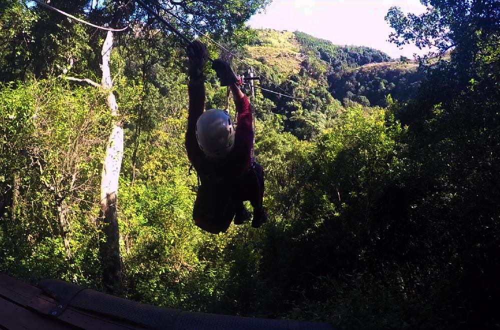 Ziplining through the trees | Wanderlust Movement