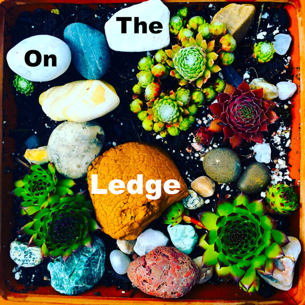 Listen to my podcast on indoor gardening,  On The Ledge