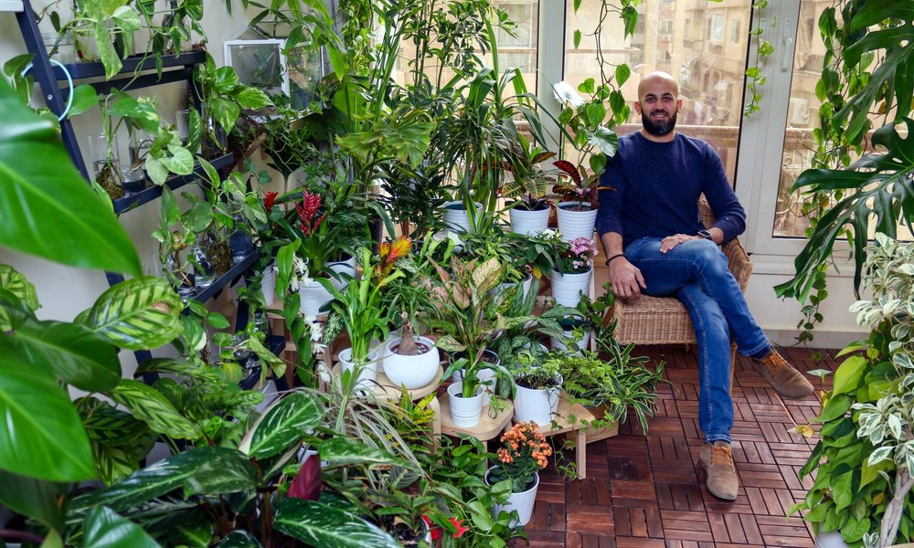 Mohamed Osman of  @Behind_The_Seeds  with some of his houseplant collection.