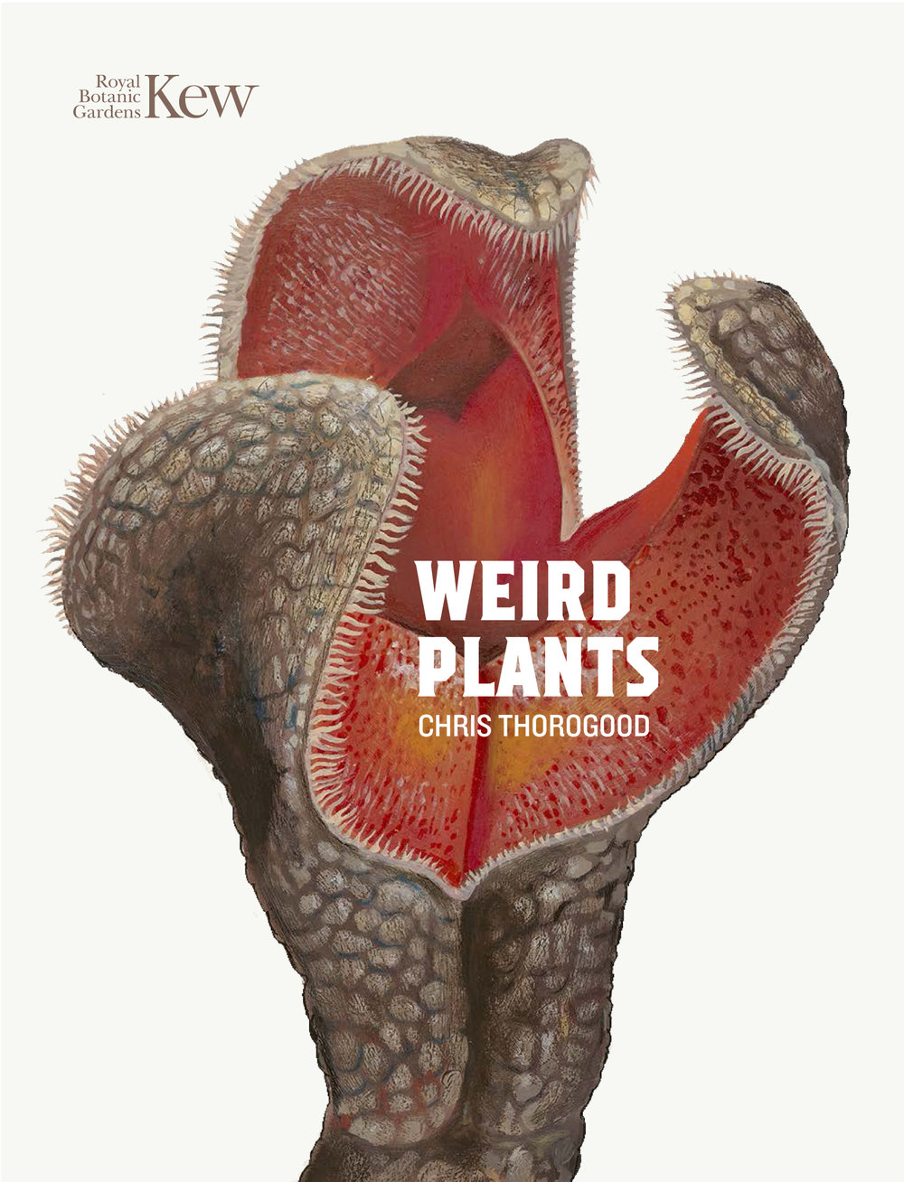 Weird plants cover_v2.jpg