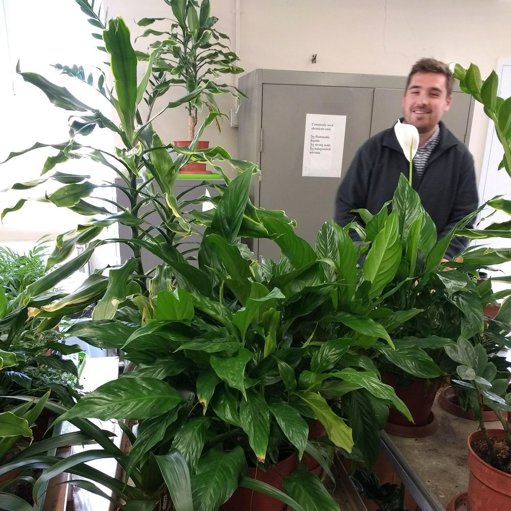 Curtis Gubb in the lab with some of his plants.