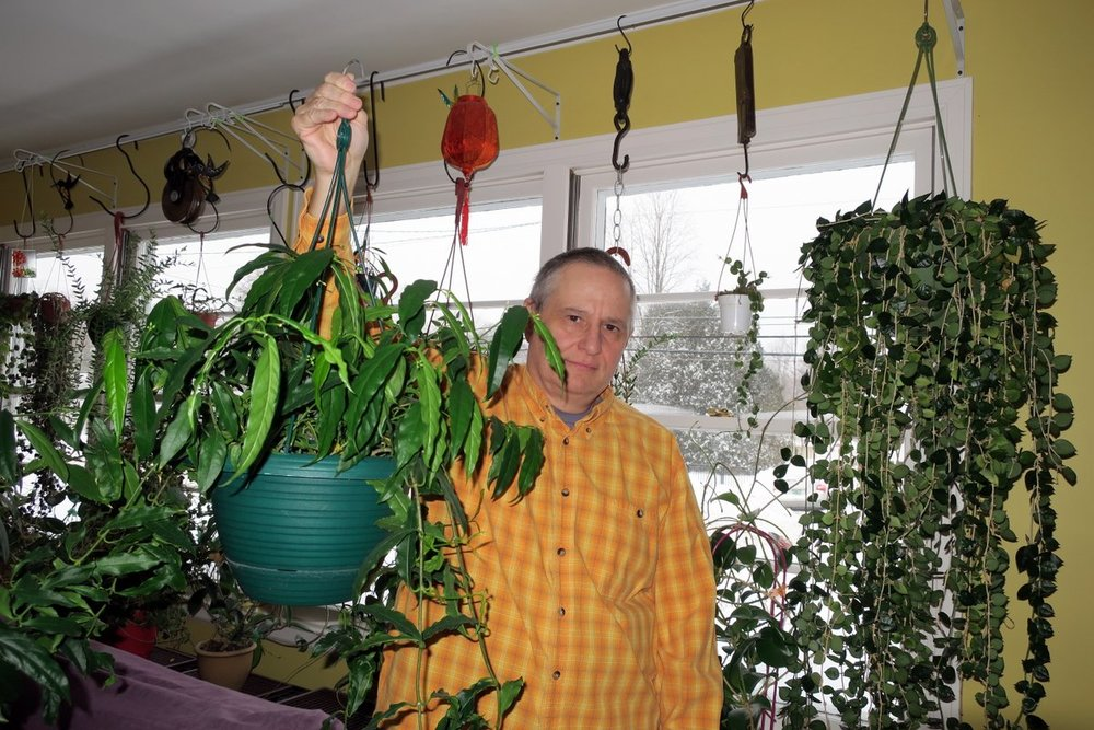 Doug with his  H. papaschonii  plant. Photograph: Doug Chamberlain