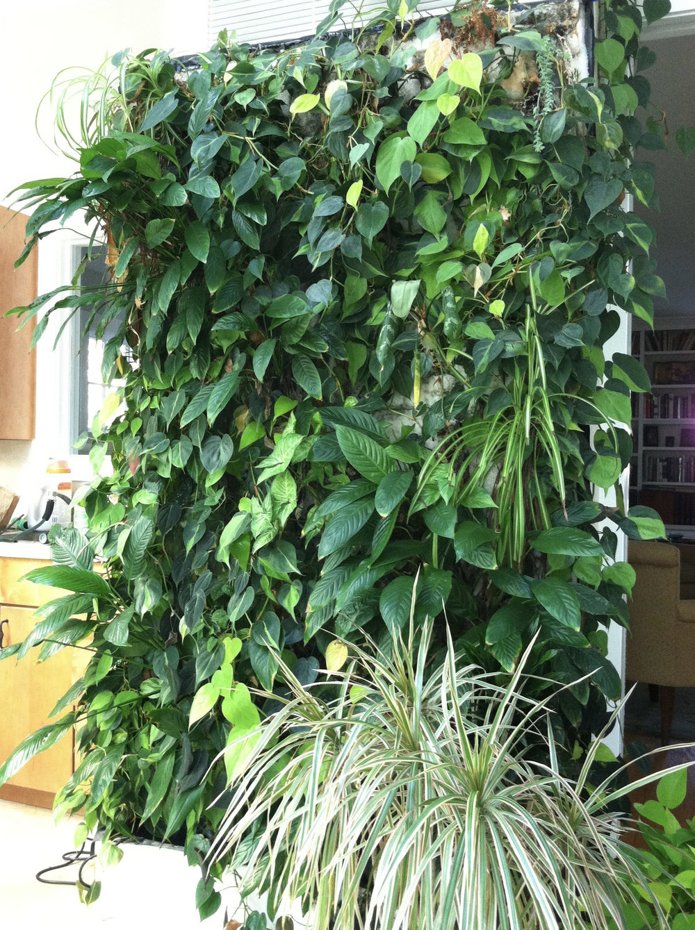 Ruth Kassinger's green wall. Click on the image for a closer look.