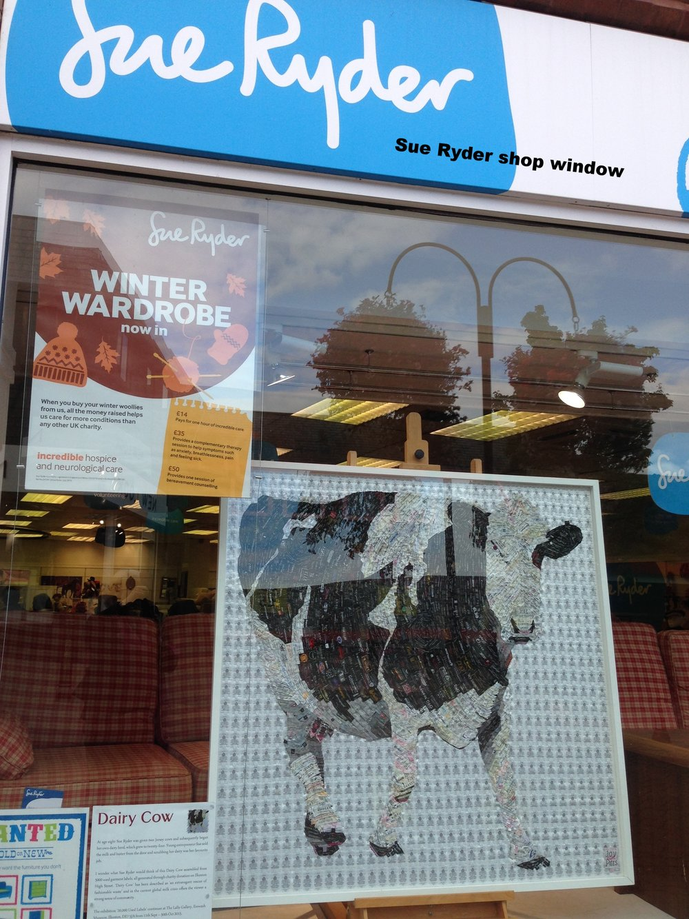 DAIRY COW in SUE RYDER WINDOW.jpg
