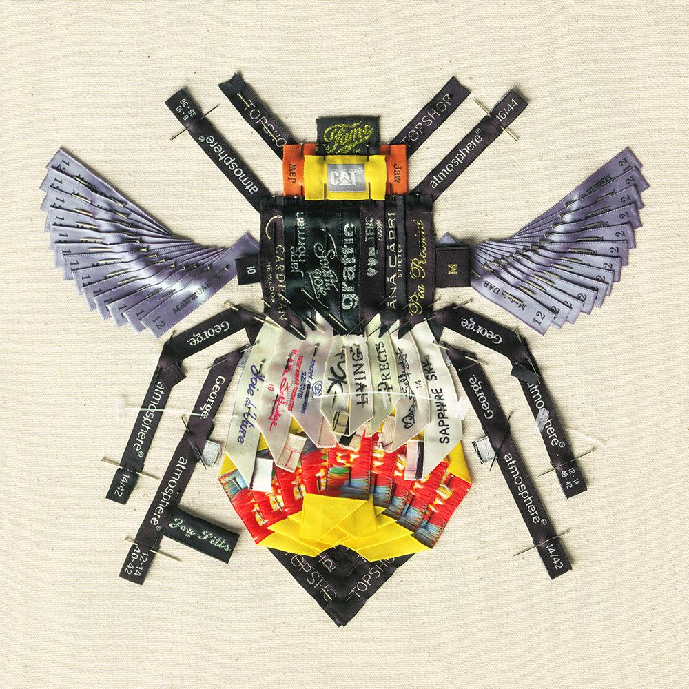 Orange Bee with 72 garments - Joy Pitts .jpg