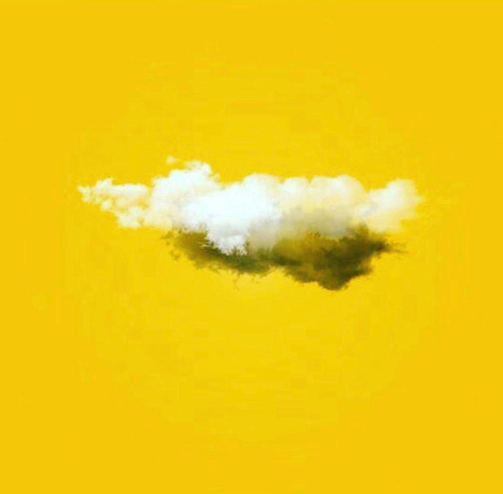 📷 @yellow