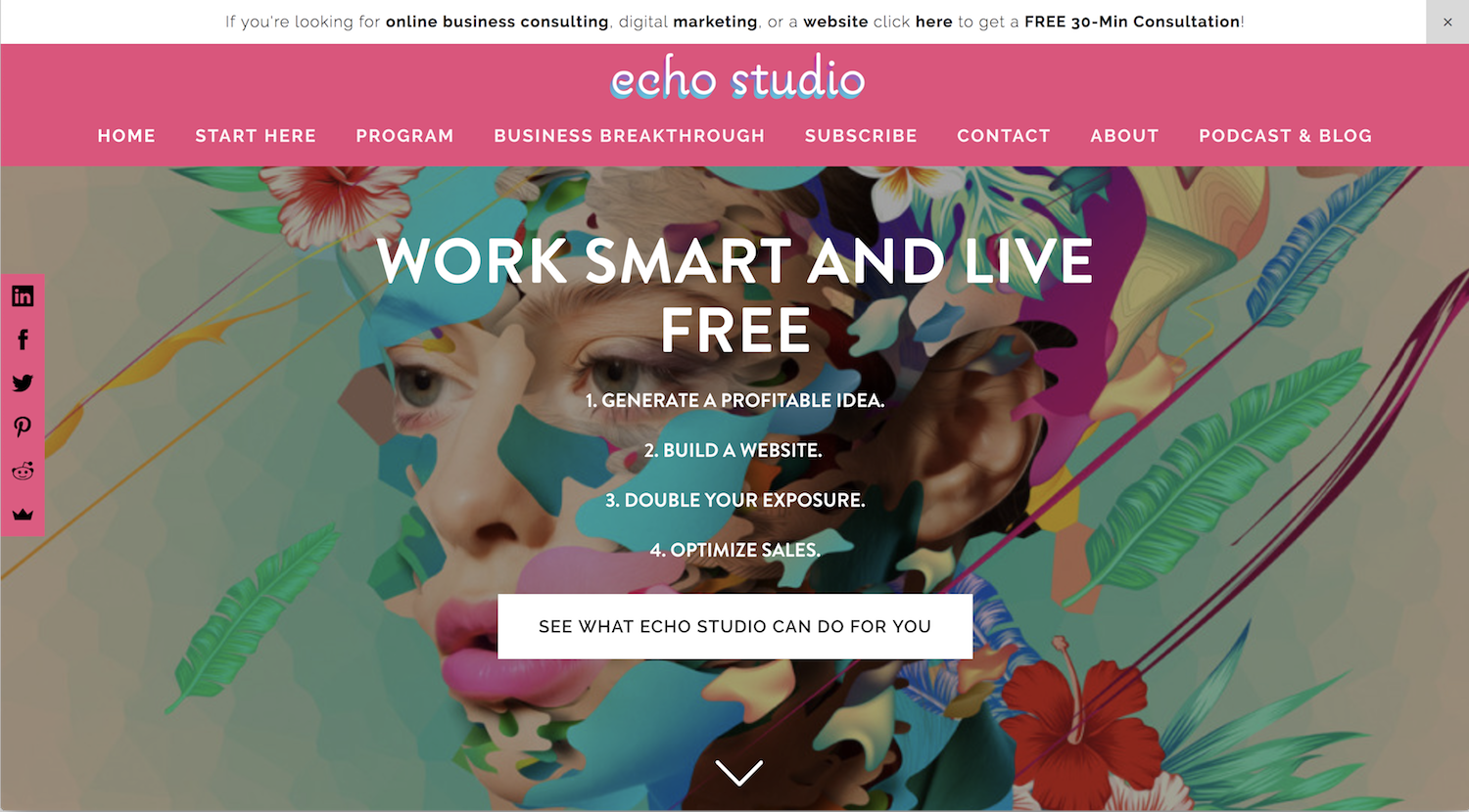 2c8644540dc3 Echo Studio - Esther Chae - 3 Hearts Consulting - Case Study