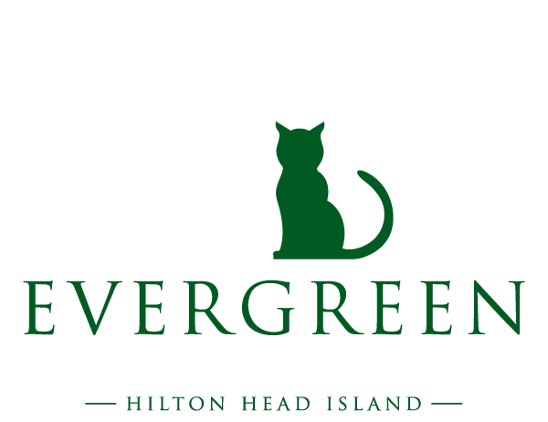 Evergreen Pet Lodge HHI