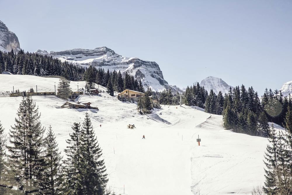 Bronwyn_Townsend_Wengen_Switzerland
