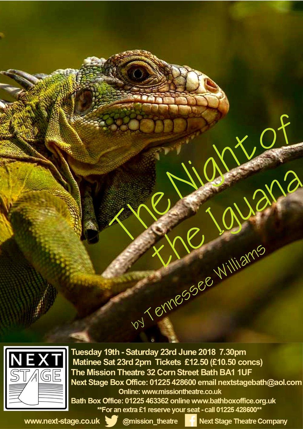 Night of the Iguana draft poster 2.jpg