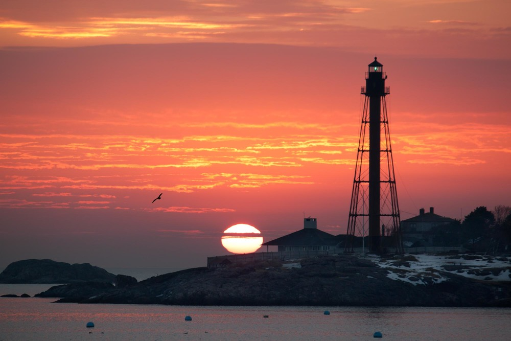 Marblehead Lighthouse Sunrise/Seagull