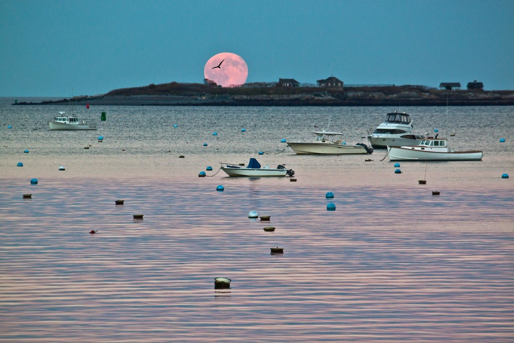 """Full Moon over Children's Island"""
