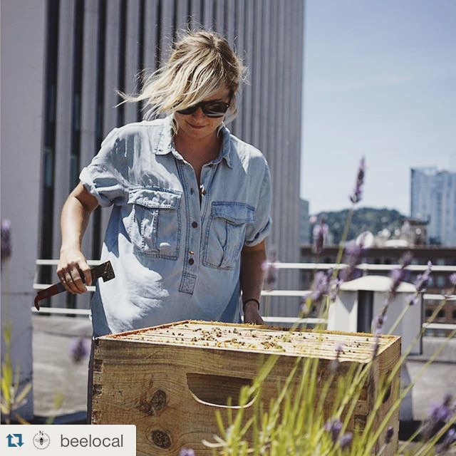 #Repost @beelocal  ・・・  Spent the afternoon with @katefranzman of Bee Public. Kate is doing fantastic work in Indianapolis around bees and education. It was a privilege watch her work one of our rooftop hives. #apiculture #beekeeping #oregon #portland #indiana #indianapolis #pdx #urbanbees #rooftopbees (at Imperial)