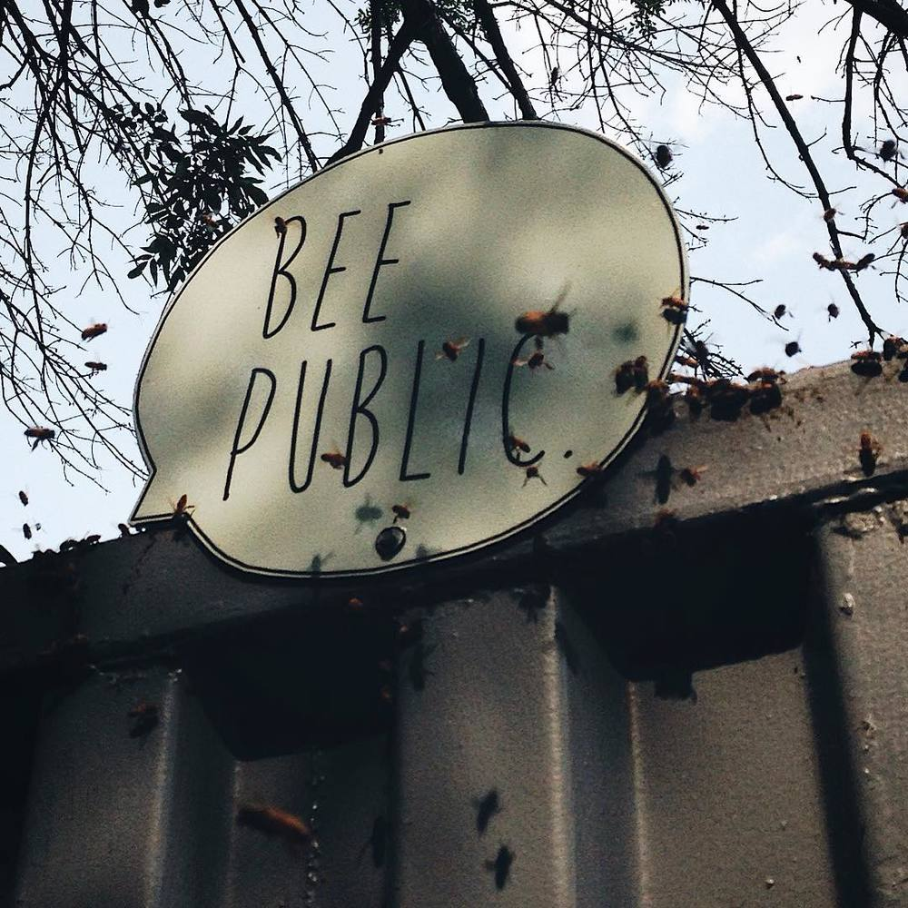 These bees have something to say. (at Chase Near Eastside Legacy Center)