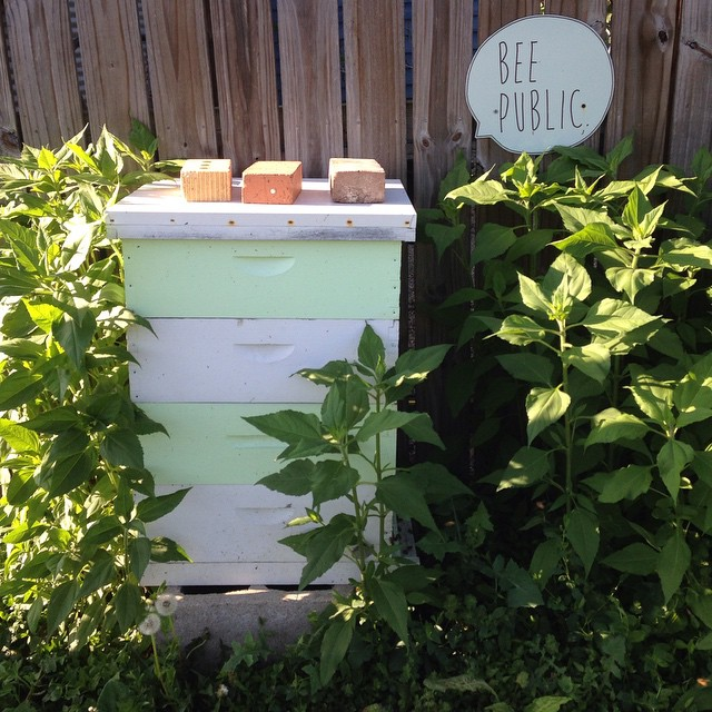 #beepublic  (at Growing Places Indy)
