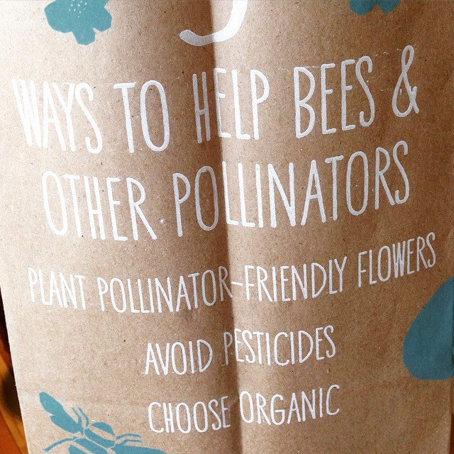 About to give a FREE talk on beekeeping, native pollinators, and gardening for bees at Whole Foods. Come on over!