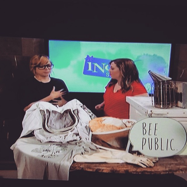If you blinked, you might've missed it, this morning's segment on #IndyStyle was preempted by thunderstorm coverage, but I squeezed a few bee facts in nonetheless! 🐝📺 (at Indy Style at WISH TV 8)