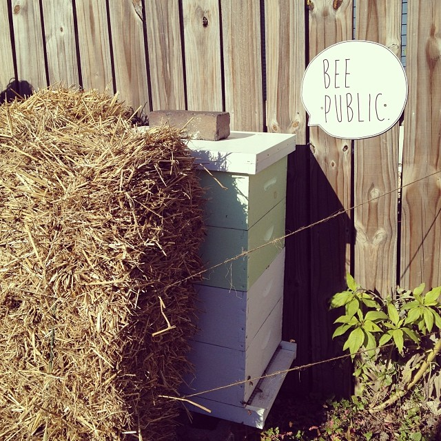 Winterizing the hives today. (at Growing Places Indy Slow Food Garden at Cottage Home)
