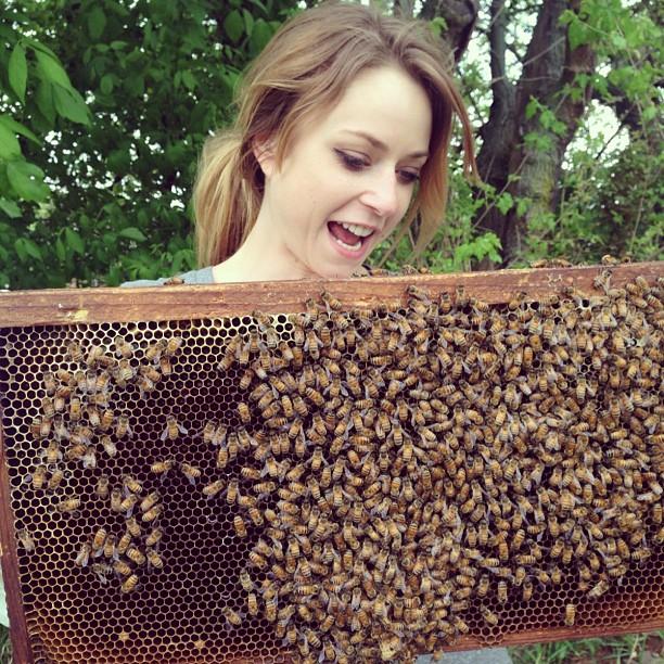Giving my hive the juicy deets. Bees are notorious gossipmongers.