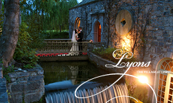 cliff-at-lyons-wedding-venue-ireland.jpg