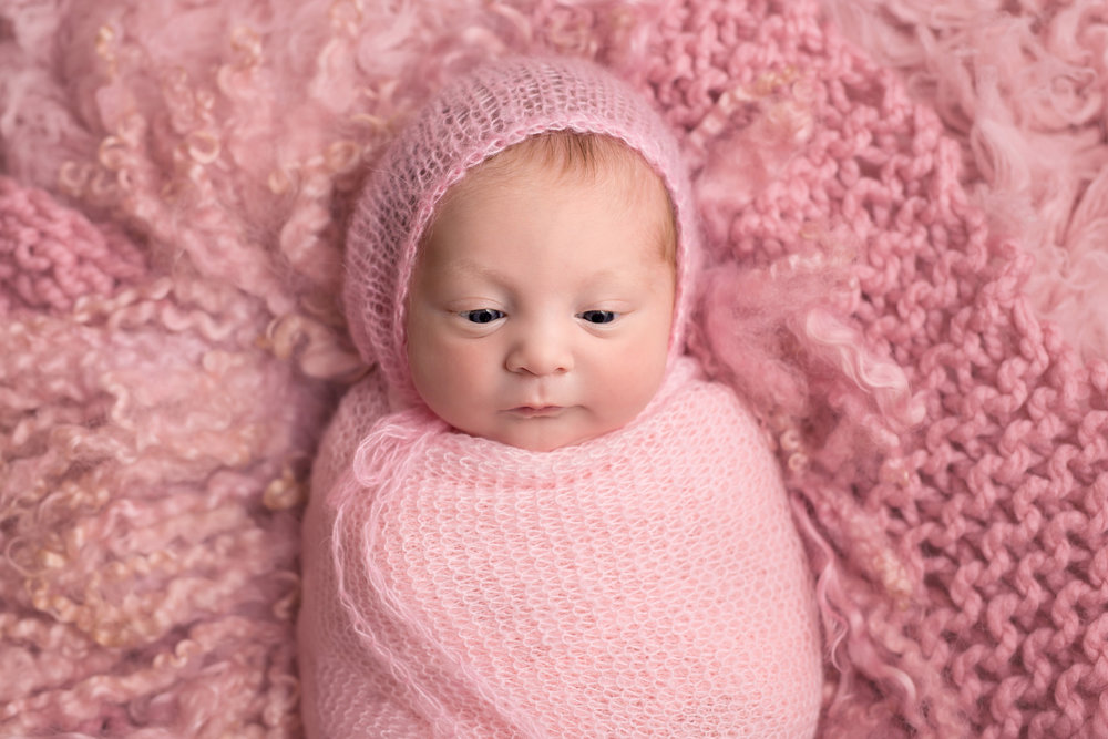 Karen Kimmins Newborn Photography in Wellington. .jpg