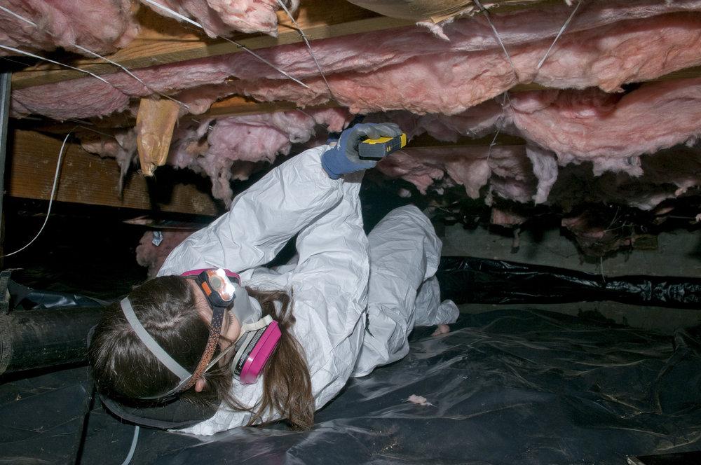 Crawlspace and insulation check