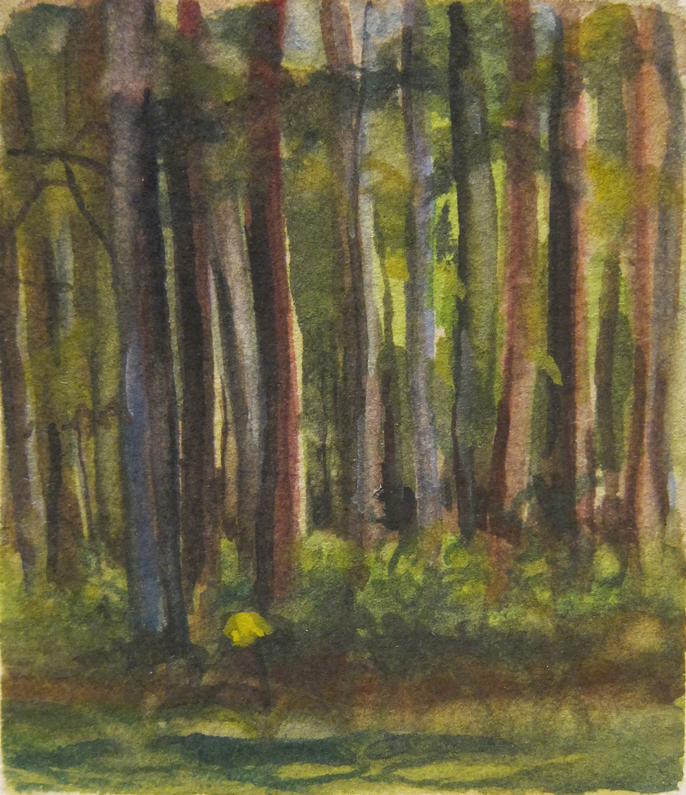 HAMPTON WOODS 2014, 2.5 x 3 inches private collection © 2016, Michael Kirk all rights reserved
