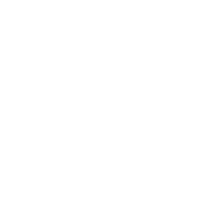 Preserve Historic Dinkytown