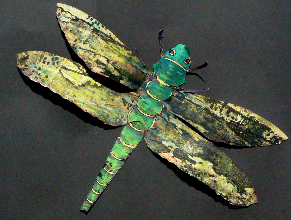 Winged animal: Dragon fly