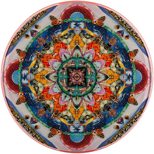 "Third Eye Vision 2014 36"""