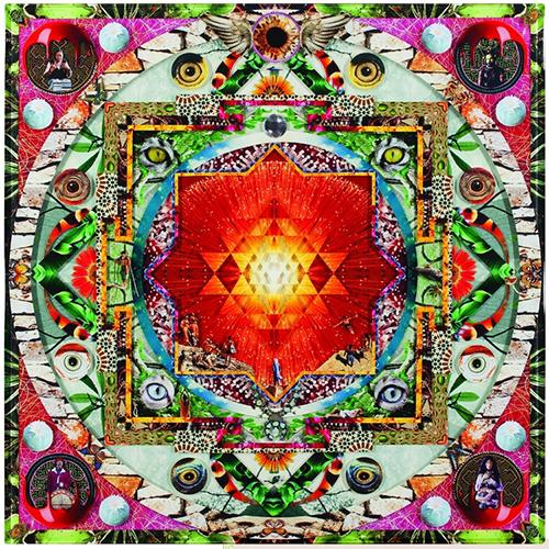 """Medicina Mandala 2011 48"""" x 48"""""""