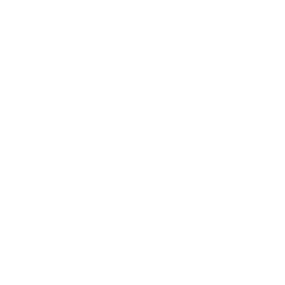 SHANNONVIEW.png