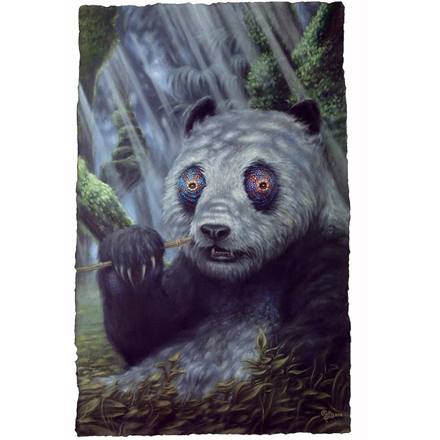 """Solitude"" 4ftx6ft, oil on canvas , 2016.... Commission piece. #evanskrederstu #zooillogical  #uglarworks  #pandeleon #panda  #chameleon  #chameleoneyes  #ambanja #forest #deepforest  #jungle #beast #rareanimal #animal  #animalhybrid #projectchimera  #chimera #fineart  #oilpainting #painting  #zootopia #zoolife  #uplatezoo"