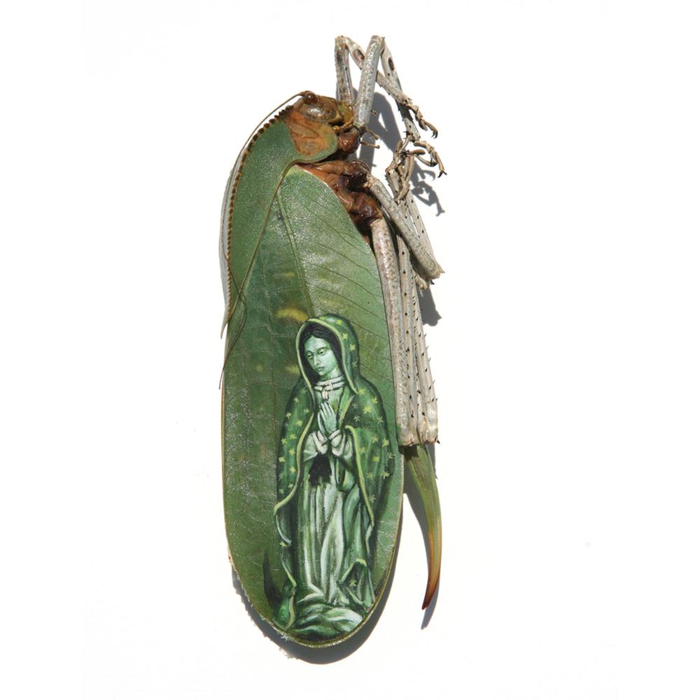 Virgen de Guadelupe - 2001