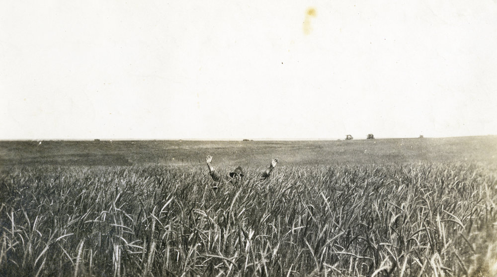 "Found small photograph in a thrift store in southern New Mexico. Printed large for  Tomorrow is Spring . 2010. The inscription on the back of the original photo reads ""A year ago we put in the field"""