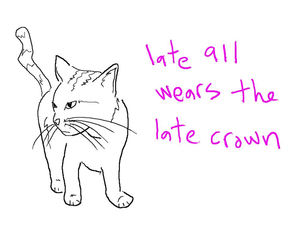 cat_911.jpg