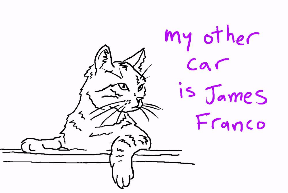 cat_franco2.jpg