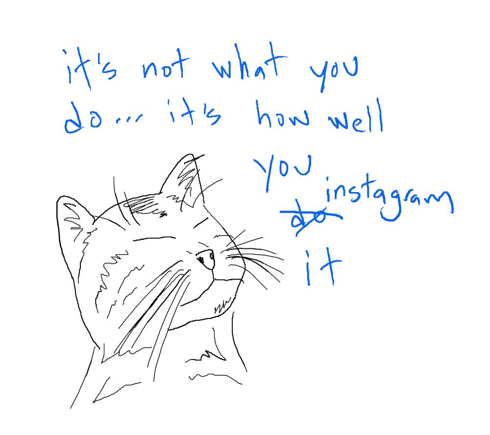 cat_insta2.jpg