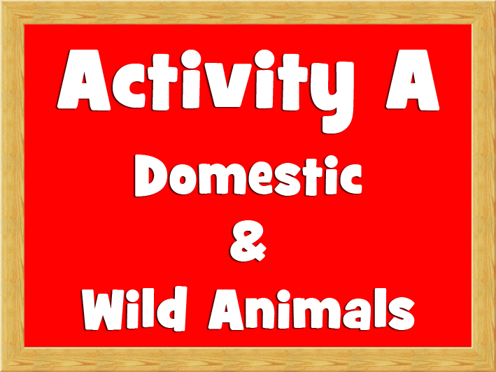 Activity A - Domestic & Wild Animals.jpg