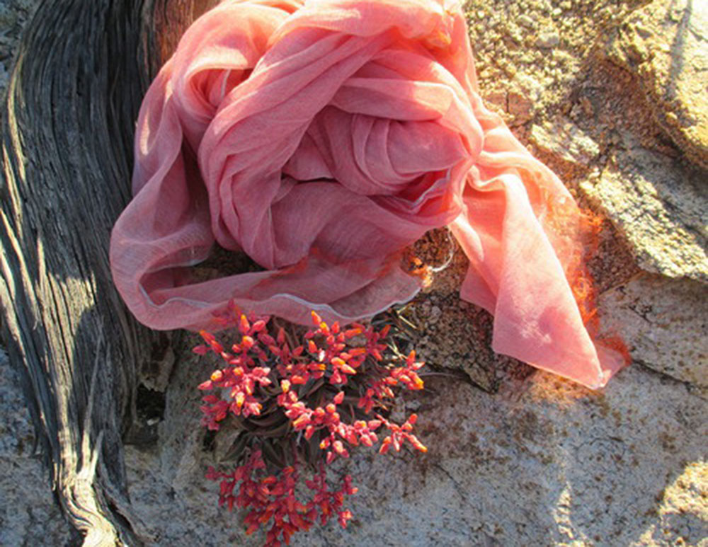 NTS pink scarf.jpg