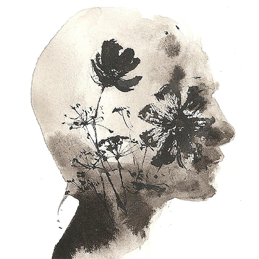 Marina Marcolin art