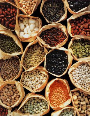 Beans_Cereals_Nuts_Pseudocereals_Nut-like_Gymnosperm_Seeds.jpg