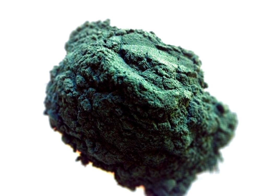 klamath-lake-blue-green-algae.jpg