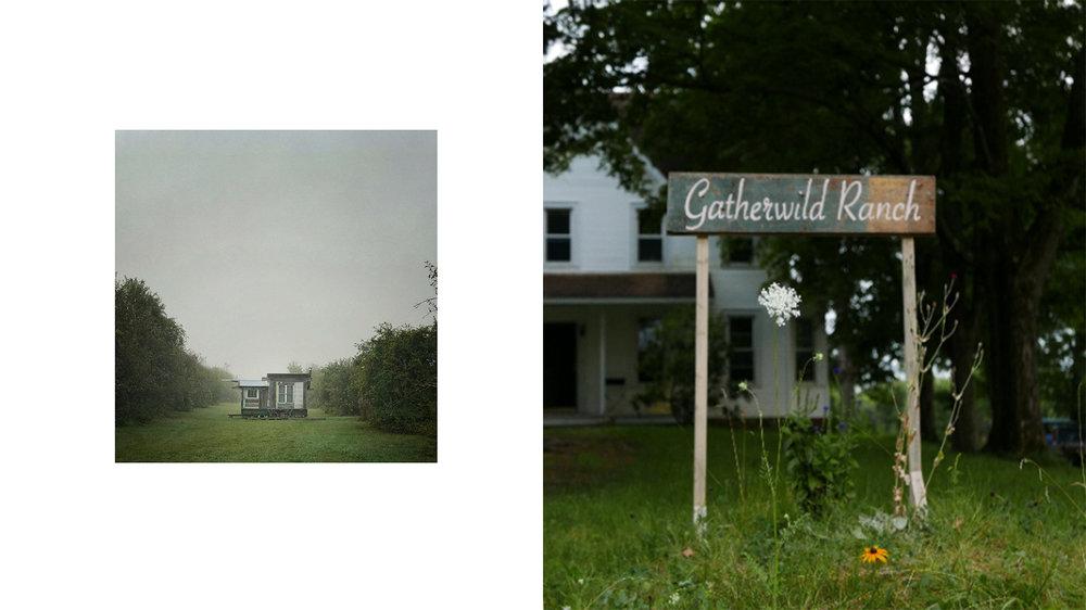 GATHERWILD