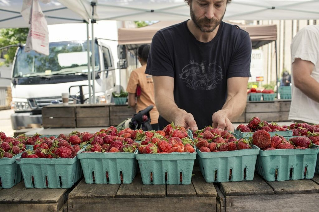 RobDuncanwstrawberries_1