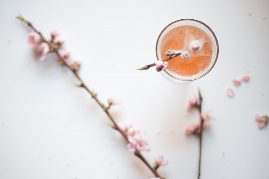 The Sign of Spring cocktail photographed by Amber Breitenberg.