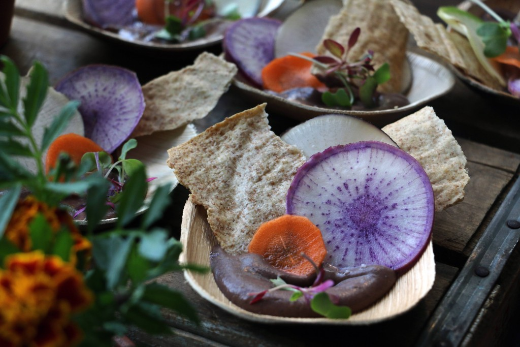 Woodberry Kitchen & Artifact Coffee came down from Baltimore serving a variety of local things including these gorgeous Steadfast Farms black bean hummus with raw vegetable chips and spelt crackers. (Photo by January Jai)
