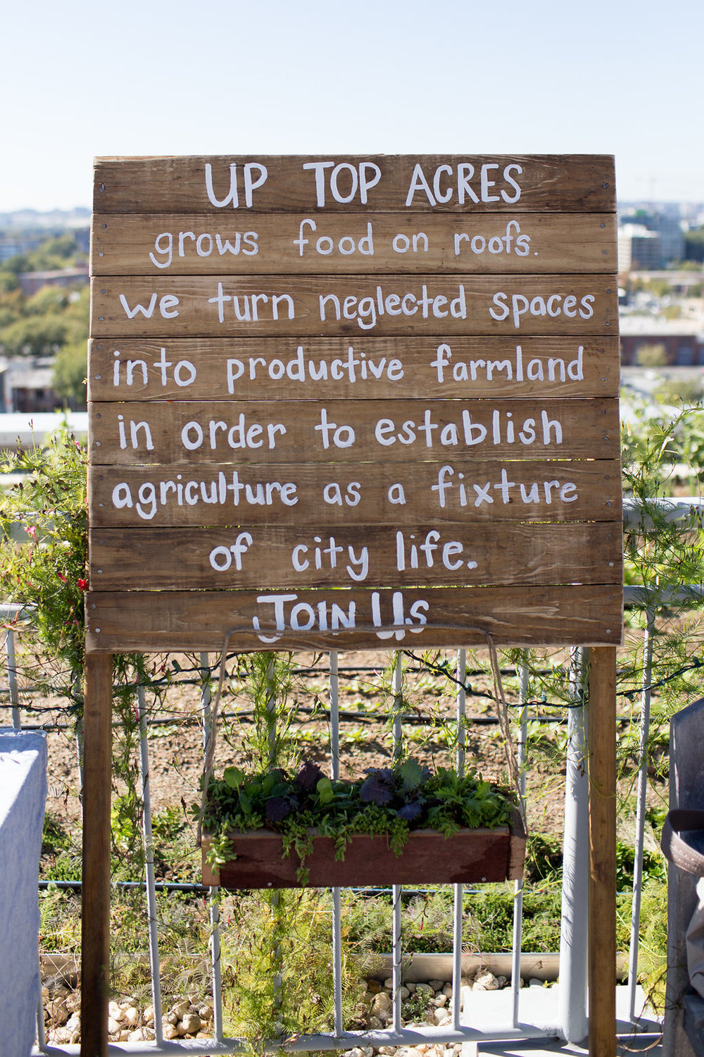 Celebrating one year of rooftop gardening. (Photo by Jennifer Chase)