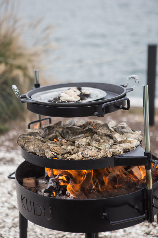 edible_oyster-86.jpg