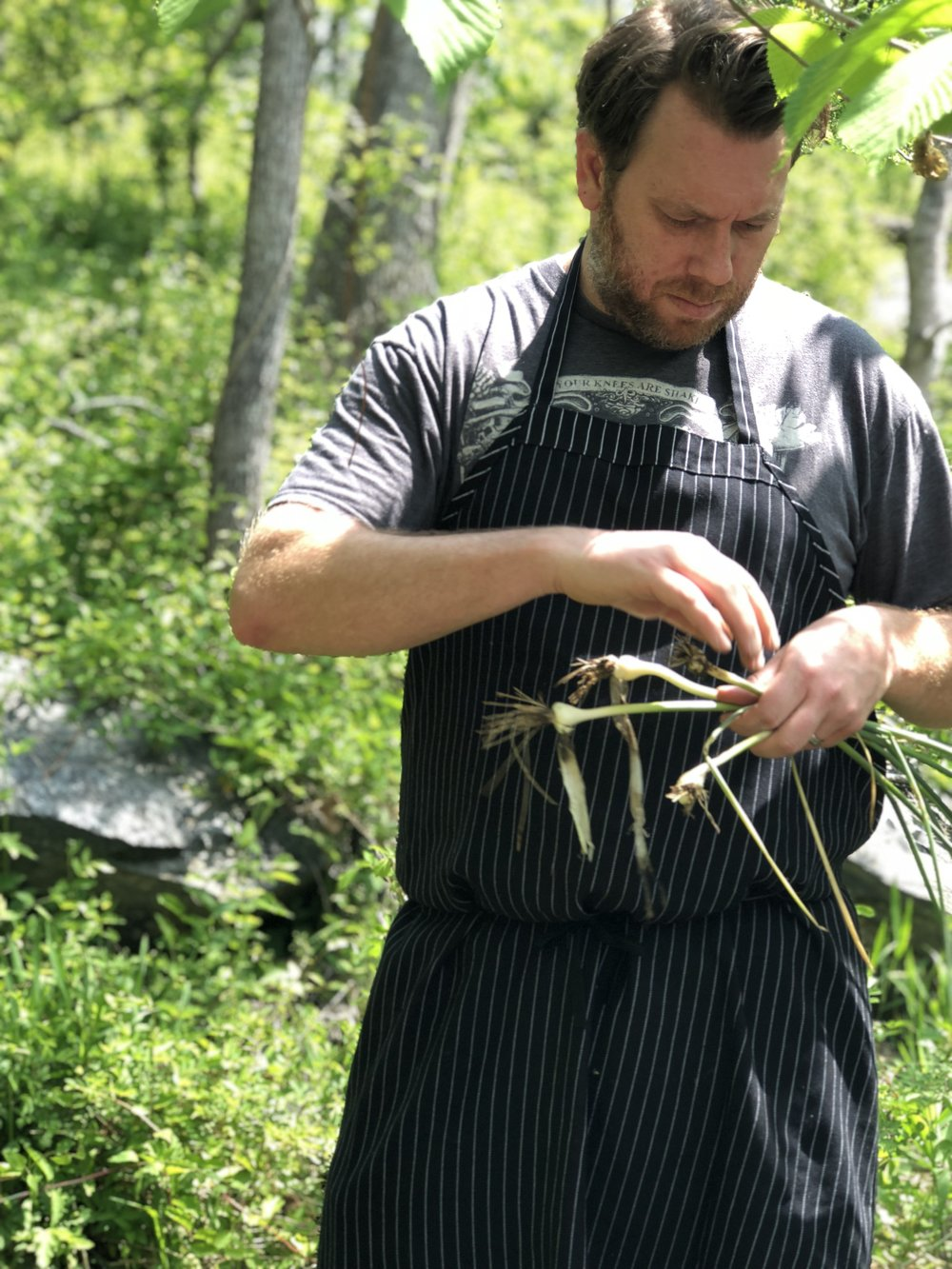 Bourbon Steak Chef Drew Adams pulls wild onions during a foraging hike in maryland.